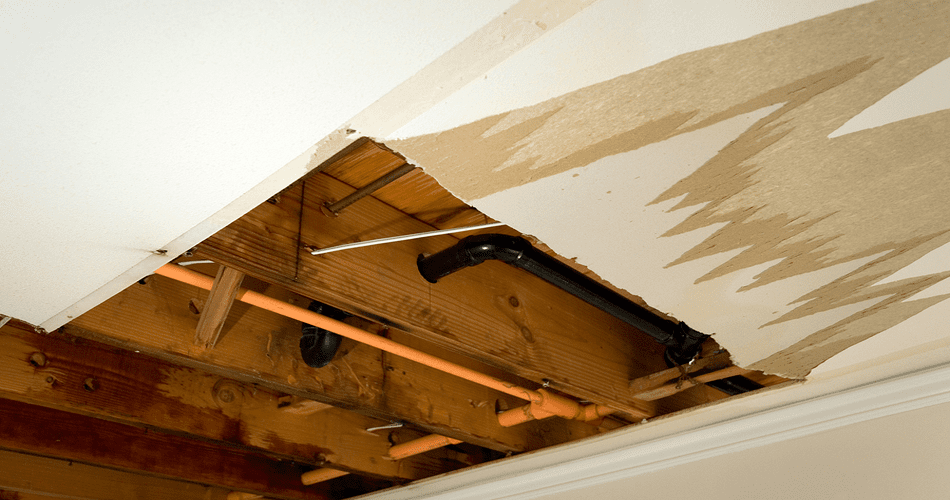 ceiling leak Service in Portland with 3 Mountains Plumbing